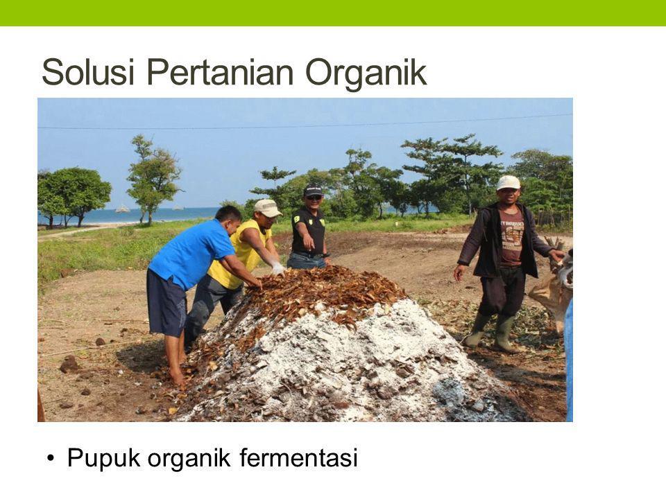 Solusi Pertanian Organik Pupuk organik fermentasi