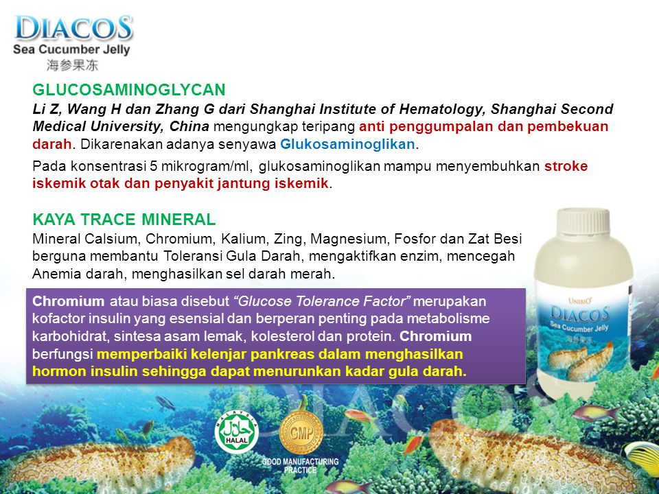 GLUCOSAMINOGLYCAN Li Z, Wang H dan Zhang G dari Shanghai Institute of Hematology, Shanghai Second Medical University, China mengungkap teripang anti penggumpalan dan pembekuan darah.