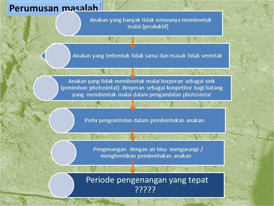 1.Mengetahui periode pengenangan air yang tepat pada tanaman padi dengan metode SRI Tujuan 2.