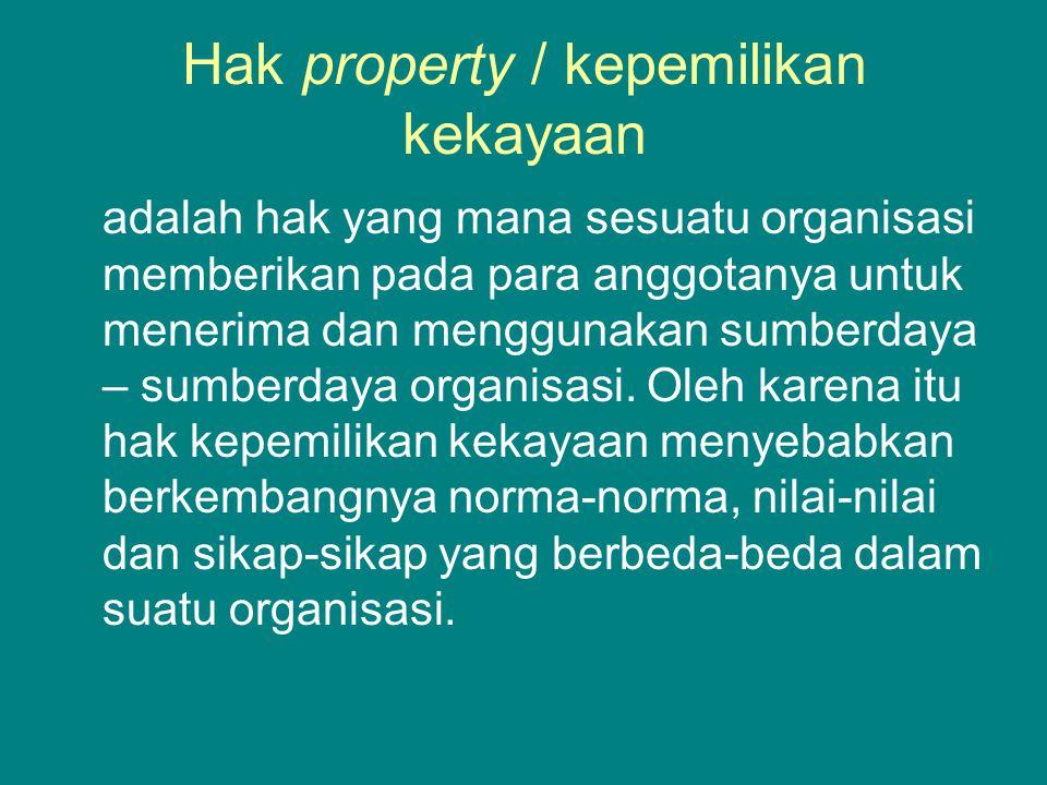 Hak property / kepemilikan kekayaan adalah hak yang mana sesuatu organisasi memberikan pada para anggotanya untuk menerima dan menggunakan sumberdaya – sumberdaya organisasi.