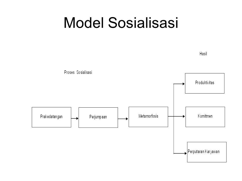 Model Sosialisasi