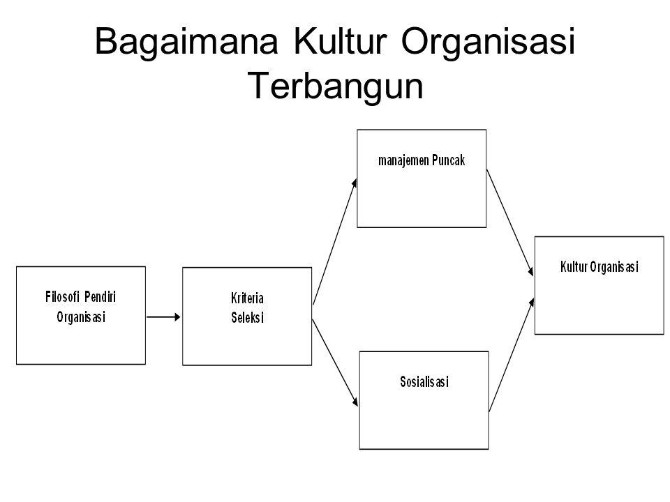 Bagaimana Kultur Organisasi Terbangun