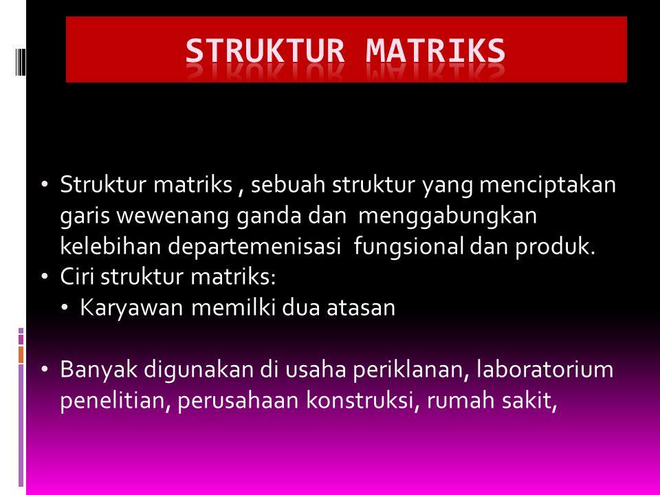 Struktur matriks, sebuah struktur yang menciptakan garis wewenang ganda dan menggabungkan kelebihan departemenisasi fungsional dan produk. Ciri strukt