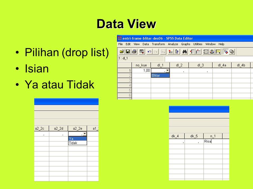 Data View Pilihan (drop list) Isian Ya atau Tidak