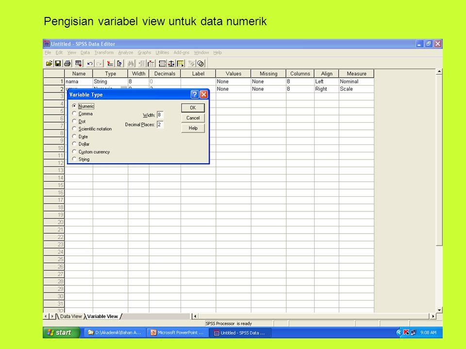 Pengisian variabel view untuk data numerik