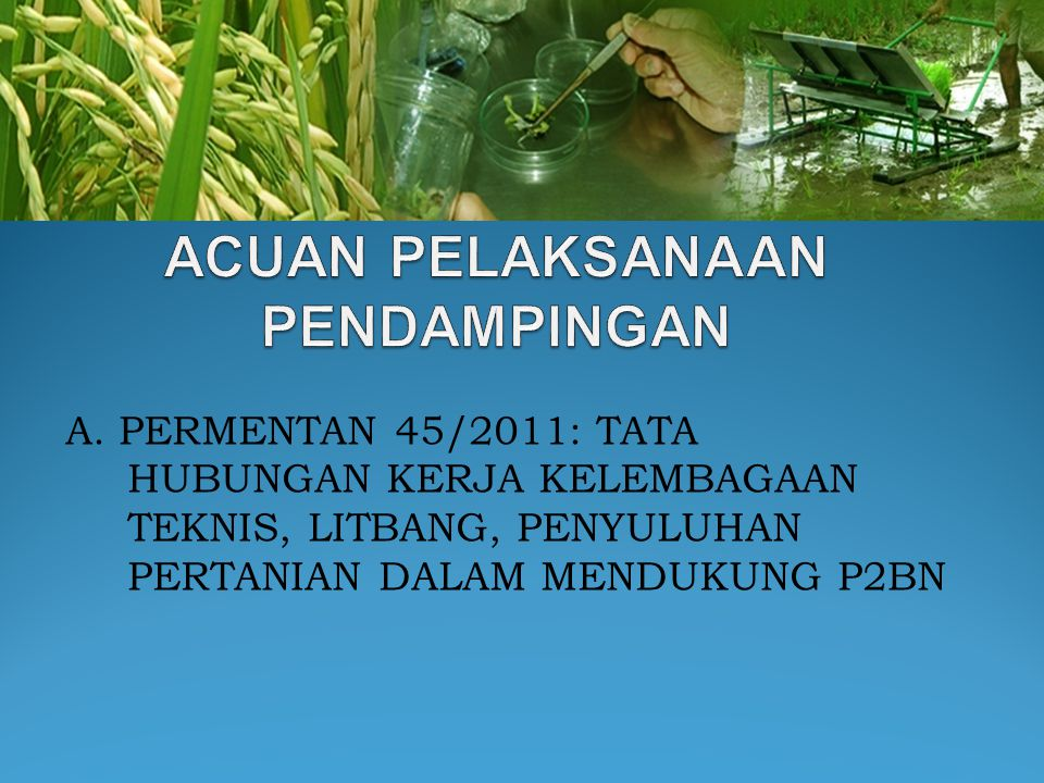 A. PERMENTAN 45/2011: TATA HUBUNGAN KERJA KELEMBAGAAN TEKNIS, LITBANG, PENYULUHAN PERTANIAN DALAM MENDUKUNG P2BN