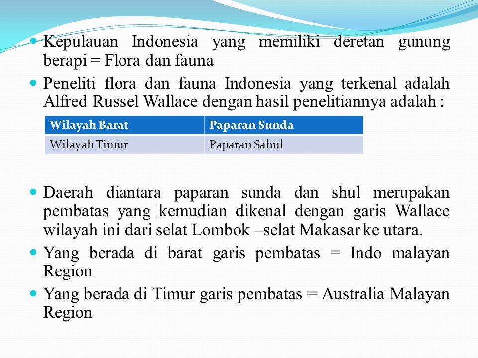 Kepulauan Indonesia yang memiliki deretan gunung berapi = Flora dan fauna Peneliti flora dan fauna Indonesia yang terkenal adalah Alfred Russel Wallac