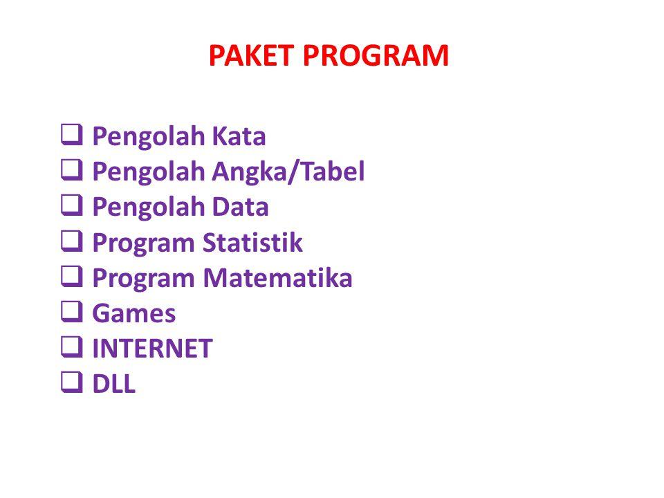  Pengolah Kata  Pengolah Angka/Tabel  Pengolah Data  Program Statistik  Program Matematika  Games  INTERNET  DLL PAKET PROGRAM