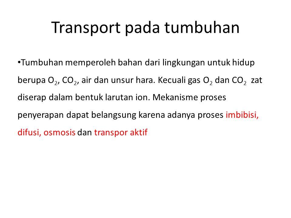 Transport pada tumbuhan Tumbuhan memperoleh bahan dari lingkungan untuk hidup berupa O 2, CO 2, air dan unsur hara. Kecuali gas O 2 dan CO 2 zat diser