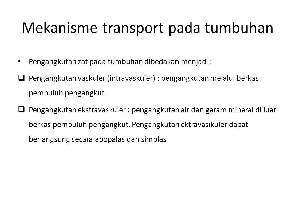 Mekanisme transport pada tumbuhan Pengangkutan zat pada tumbuhan dibedakan menjadi :  Pengangkutan vaskuler (intravaskuler) : pengangkutan melalui be