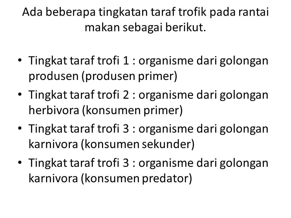 Ada beberapa tingkatan taraf trofik pada rantai makan sebagai berikut. Tingkat taraf trofi 1 : organisme dari golongan produsen (produsen primer) Ting