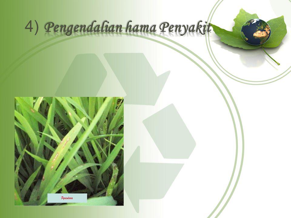 Pengendalian hama dapat dilakukan dengan beberapa cara, yaitu mekanis, pengaturan sanitasi lingkungan atau ekologi, dan kimiawi.