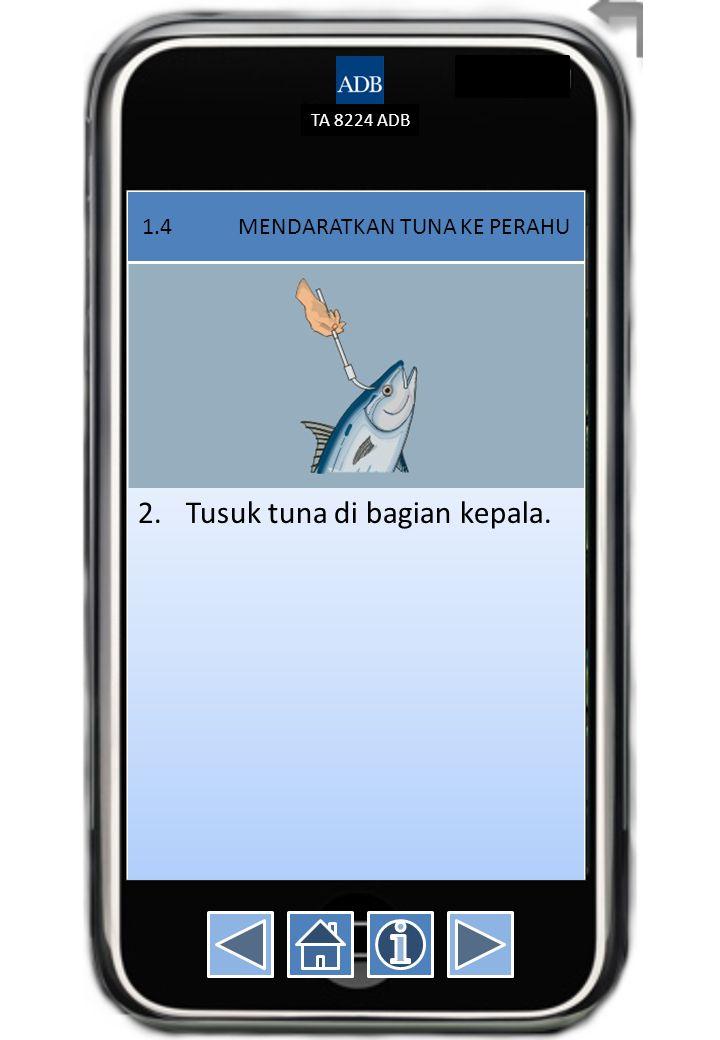 TA 8224 ADB 1.4 MENDARATKAN TUNA KE PERAHU 2.Tusuk tuna di bagian kepala.