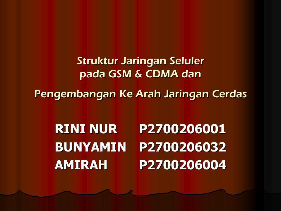 Struktur Jaringan Seluler pada GSM & CDMA dan Pengembangan Ke Arah Jaringan Cerdas RINI NUR P2700206001 BUNYAMINP2700206032 AMIRAHP2700206004