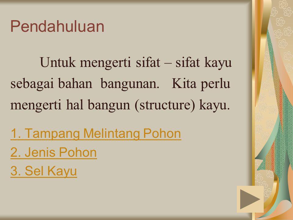 Pendahuluan Untuk mengerti sifat – sifat kayu sebagai bahan bangunan. Kita perlu mengerti hal bangun (structure) kayu. 1. Tampang Melintang Pohon 2. J