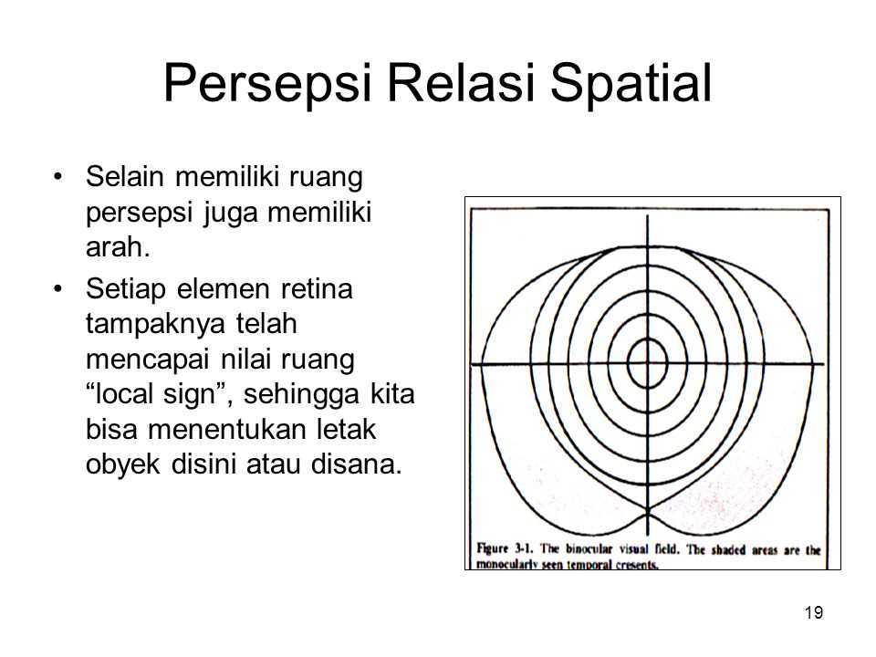 19 Persepsi Relasi Spatial Selain memiliki ruang persepsi juga memiliki arah.