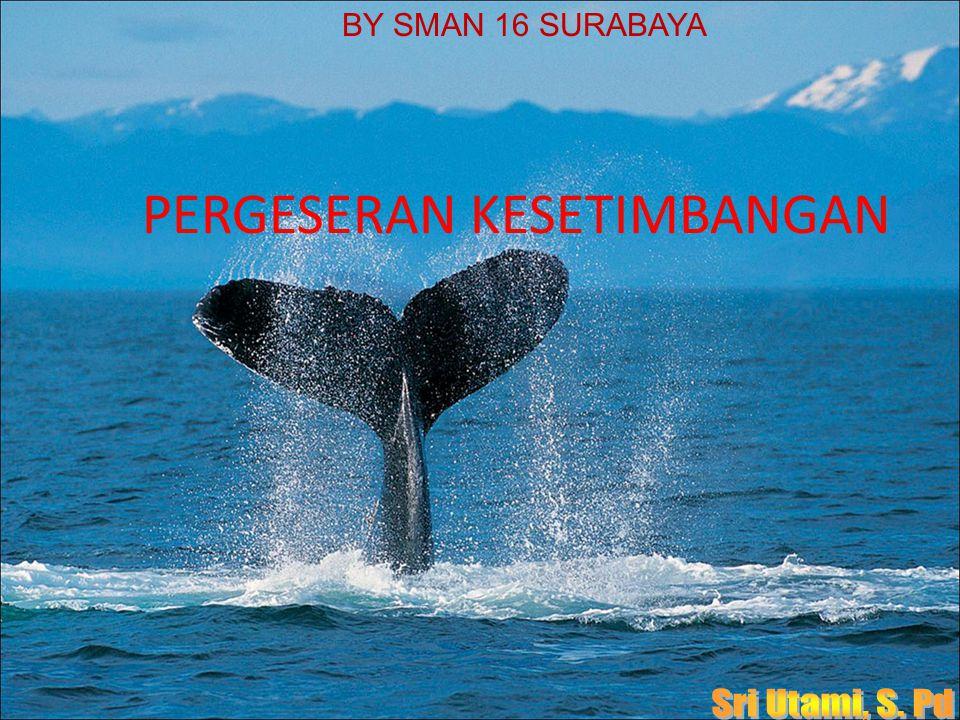 PERGESERAN KESETIMBANGAN BY SMAN 16 SURABAYA