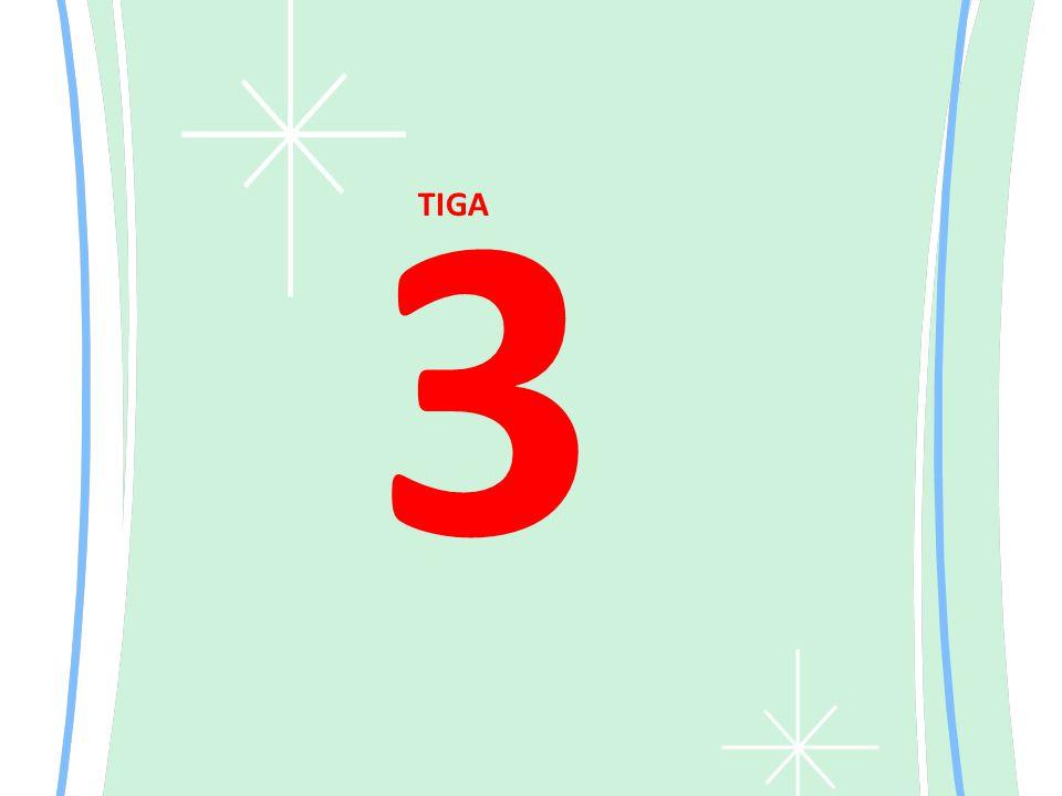 3 TIGA