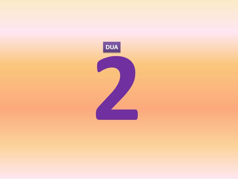 2 DUA