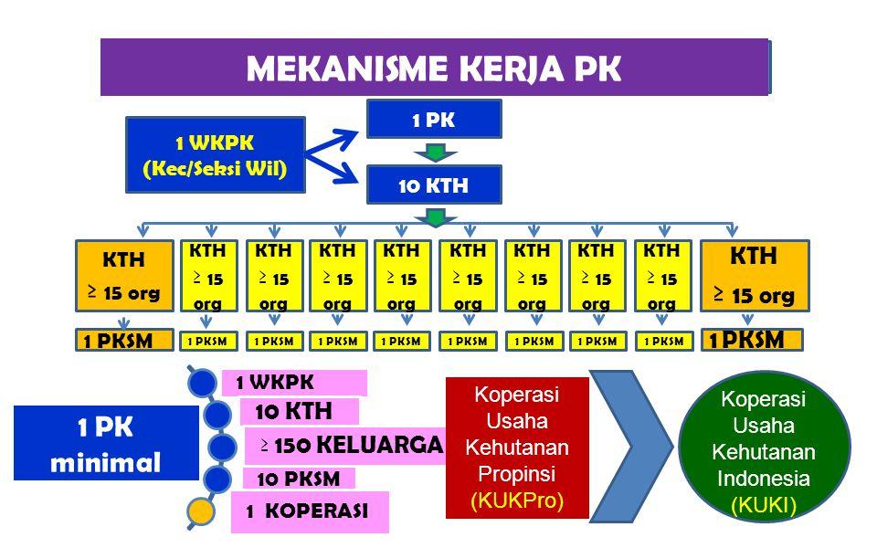 MEKANISME KERJA PK 1 PK minimal 1 WKPK (Kec/Seksi Wil) 1 PK 10 KTH KTH ≥ 15 org KTH ≥ 15 org KTH ≥ 15 org KTH ≥ 15 org KTH ≥ 15 org KTH ≥ 15 org KTH ≥