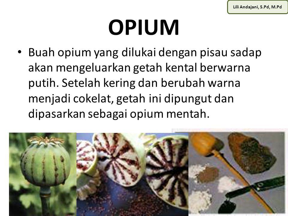 Lili Andajani, S.Pd, M.Pd OPIUM Opium mentah ini bisa diproses secara sederhana hingga menjadi candu siap konsumsi.