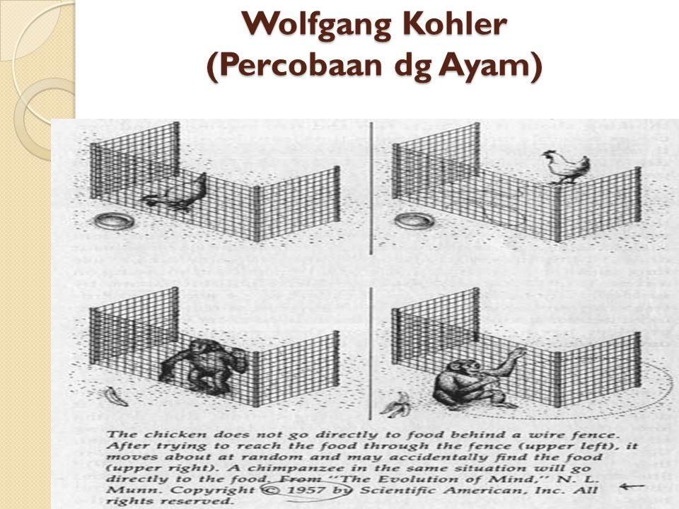 Wolfgang Kohler (Percobaan dg Ayam)