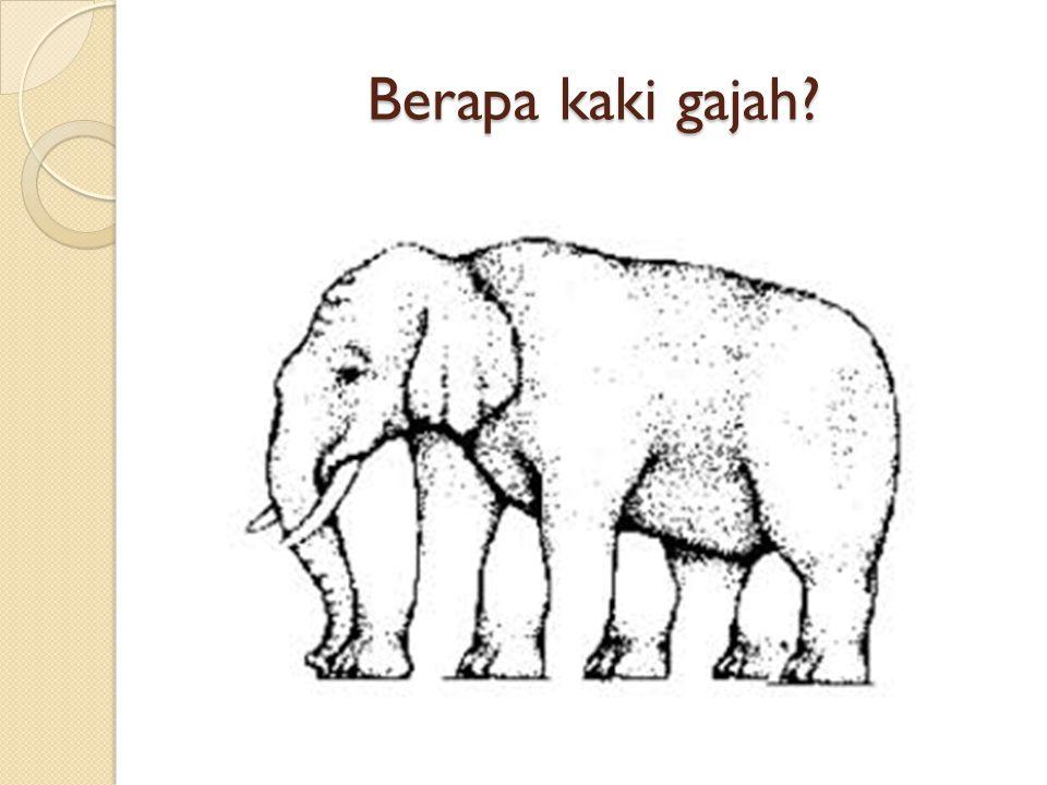 Berapa kaki gajah?