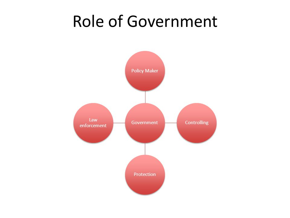 Role of Government GovernmentPolicy MakerControllingProtection Law enforcement