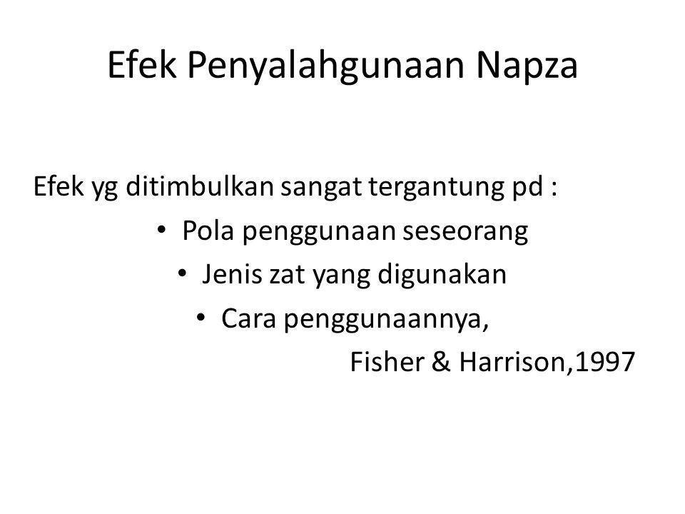 Efek Penyalahgunaan Napza Efek yg ditimbulkan sangat tergantung pd : Pola penggunaan seseorang Jenis zat yang digunakan Cara penggunaannya, Fisher & Harrison,1997