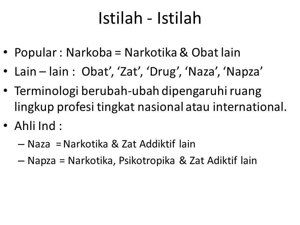 Istilah - Istilah Popular : Narkoba = Narkotika & Obat lain Lain – lain : Obat', 'Zat', 'Drug', 'Naza', 'Napza' Terminologi berubah-ubah dipengaruhi r