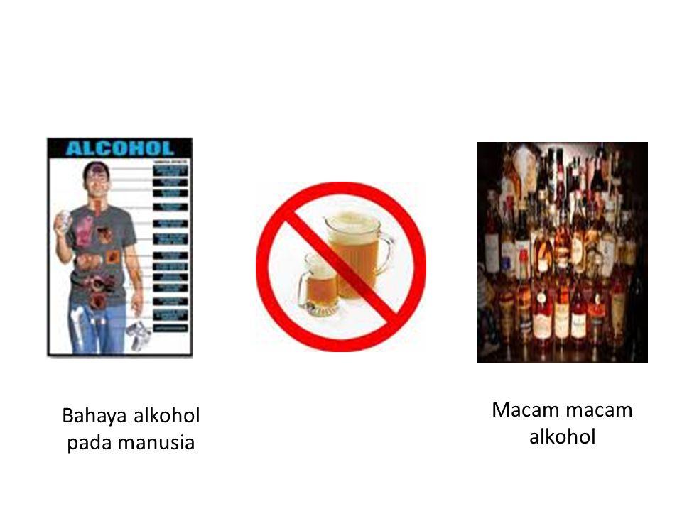 Bahaya alkohol pada manusia Macam macam alkohol