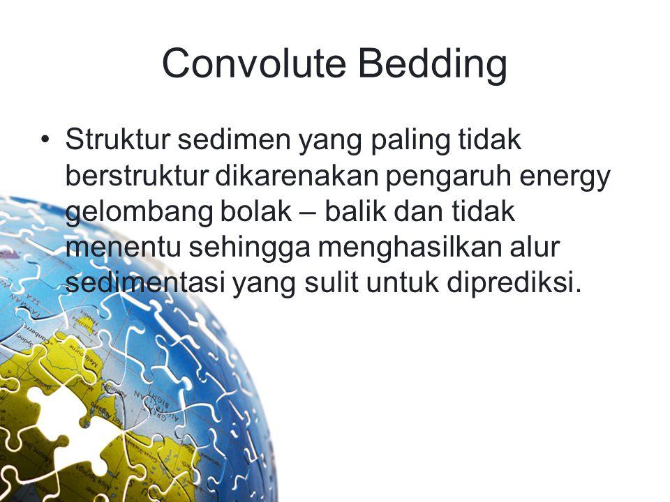 Convolute Bedding Struktur sedimen yang paling tidak berstruktur dikarenakan pengaruh energy gelombang bolak – balik dan tidak menentu sehingga mengha