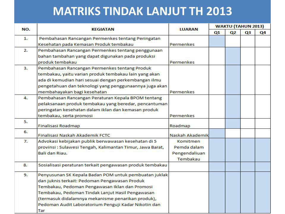 MATRIKS TINDAK LANJUT TH 2013 22