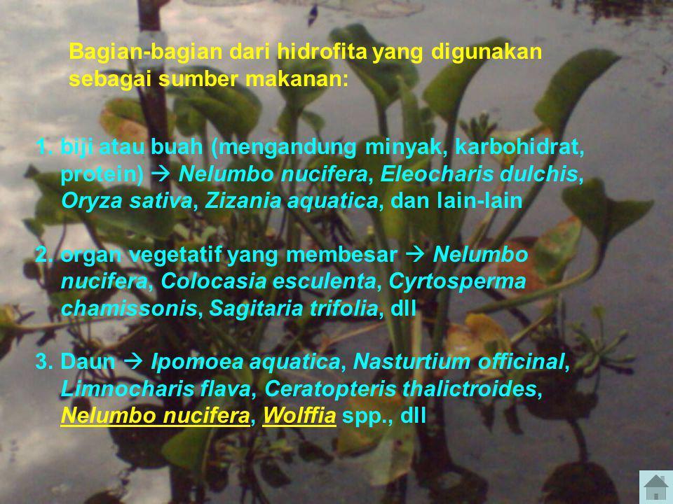 1.biji atau buah (mengandung minyak, karbohidrat, protein)  Nelumbo nucifera, Eleocharis dulchis, Oryza sativa, Zizania aquatica, dan lain-lain 2.org