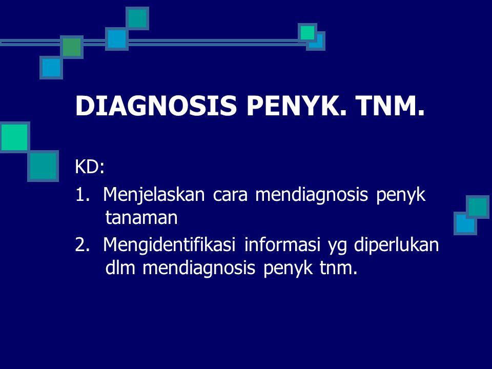 DIAGNOSIS PENYK. TNM. KD: 1. Menjelaskan cara mendiagnosis penyk tanaman 2. Mengidentifikasi informasi yg diperlukan dlm mendiagnosis penyk tnm.