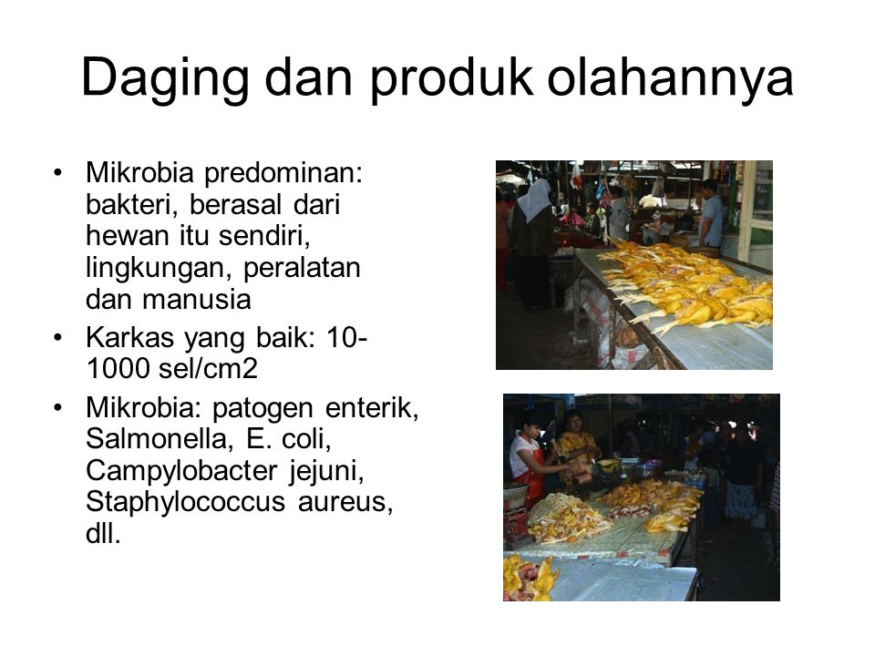 Daging dan produk olahannya Mikrobia predominan: bakteri, berasal dari hewan itu sendiri, lingkungan, peralatan dan manusia Karkas yang baik: 10- 1000