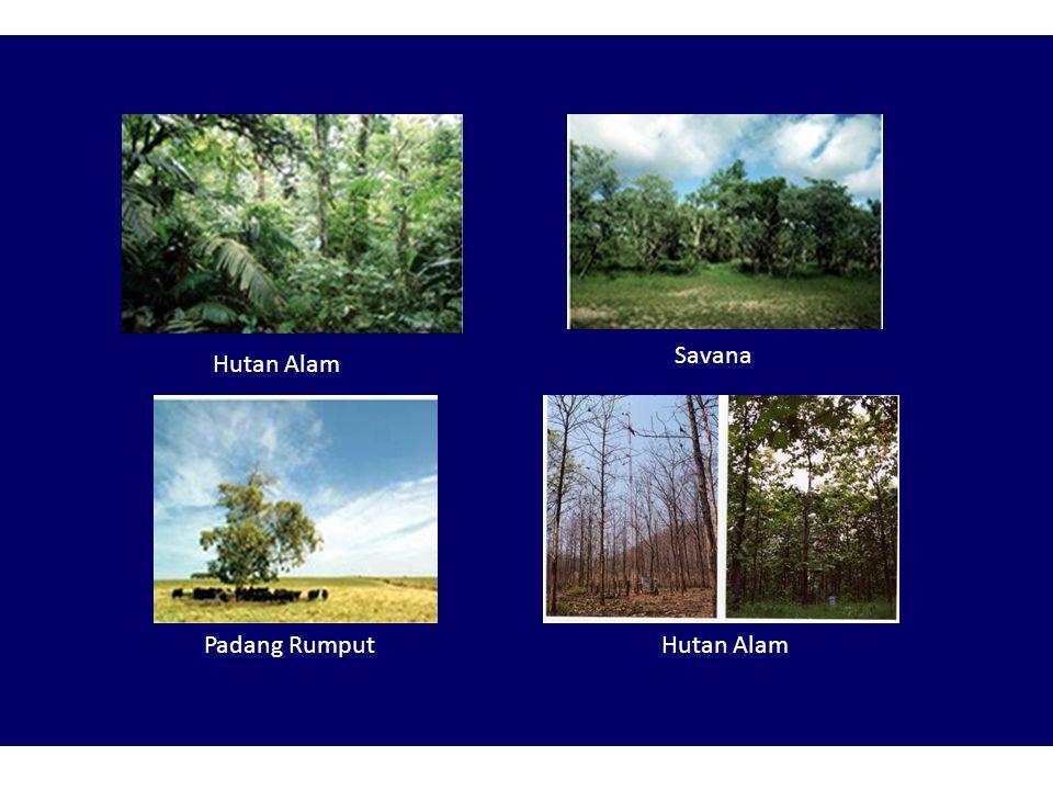 Berdasarkan proses terjadinya: a.Ekosistem alam: laut, sungai, hutan alam, danau alam, dll. b.Ekosistem buatan: sawah, kebun, hutan tanaman, tambak, d
