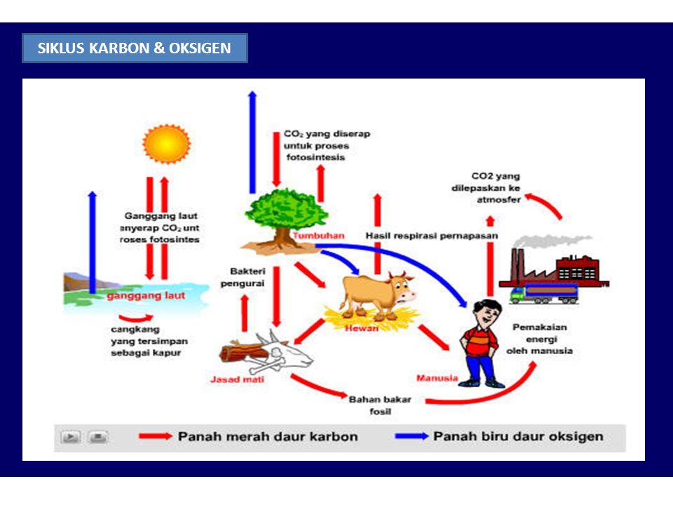 Dari sudut biosfer secara keseluruhan, siklus biogeokimia terdiri atas : 1.Tipe gas reservoir adalah di atmosfer atau hidrosfer (lautan). misal : sikl