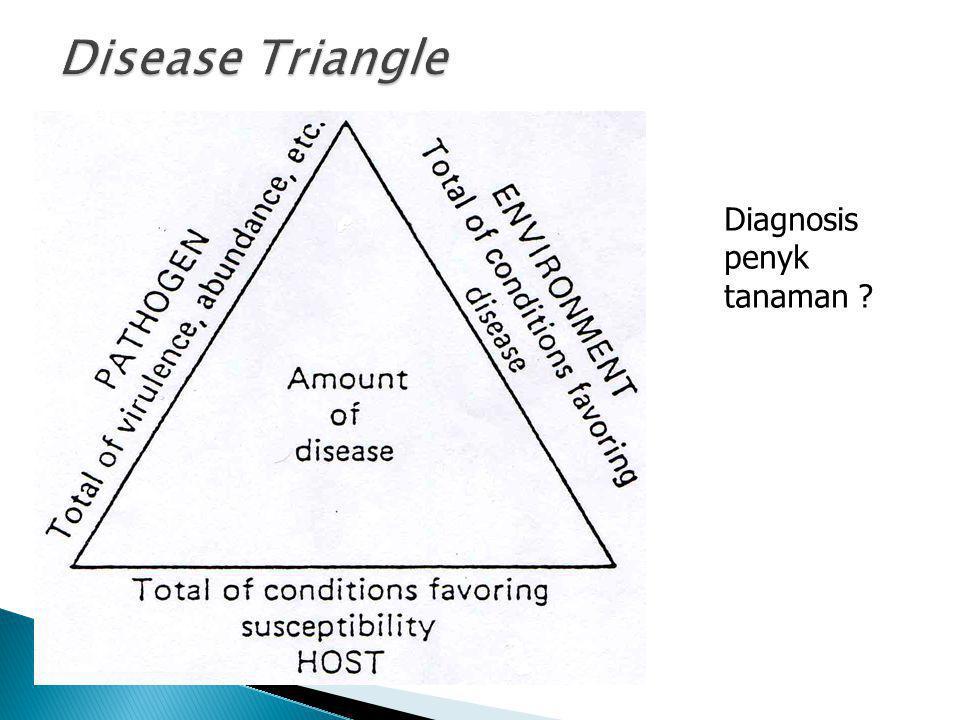Diagnosis penyk tanaman ?