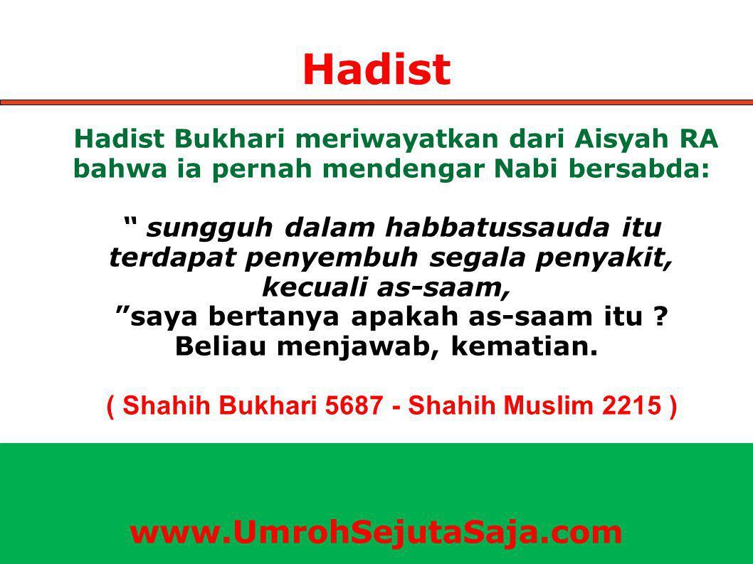 Hadist Hadist Bukhari meriwayatkan dari Aisyah RA bahwa ia pernah mendengar Nabi bersabda: sungguh dalam habbatussauda itu terdapat penyembuh segala penyakit, kecuali as-saam, saya bertanya apakah as-saam itu .