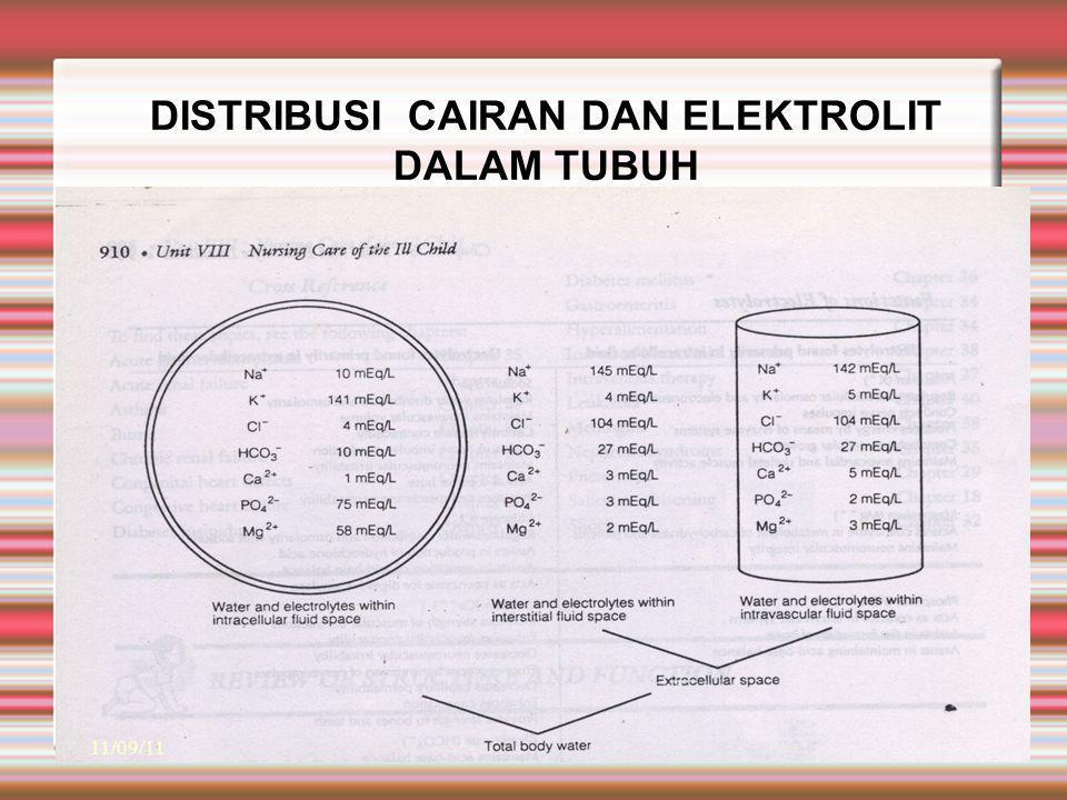 DISTRIBUSI CAIRAN DAN ELEKTROLIT DALAM TUBUH 11/09/11