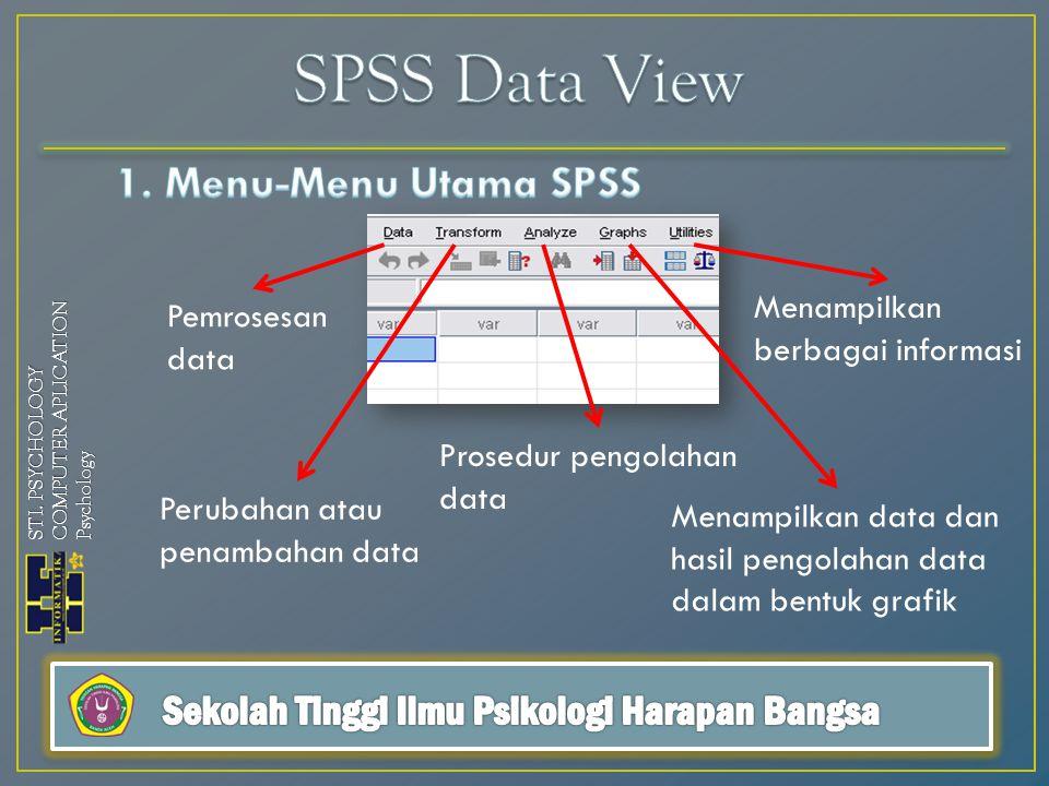 Pemrosesan data Perubahan atau penambahan data Prosedur pengolahan data Menampilkan data dan hasil pengolahan data dalam bentuk grafik Menampilkan berbagai informasi STI.