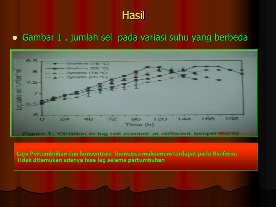 Hasil Gambar 1. jumlah sel pada variasi suhu yang berbeda Gambar 1. jumlah sel pada variasi suhu yang berbeda Laju Pertumbuhan dan konsentrasi biomass
