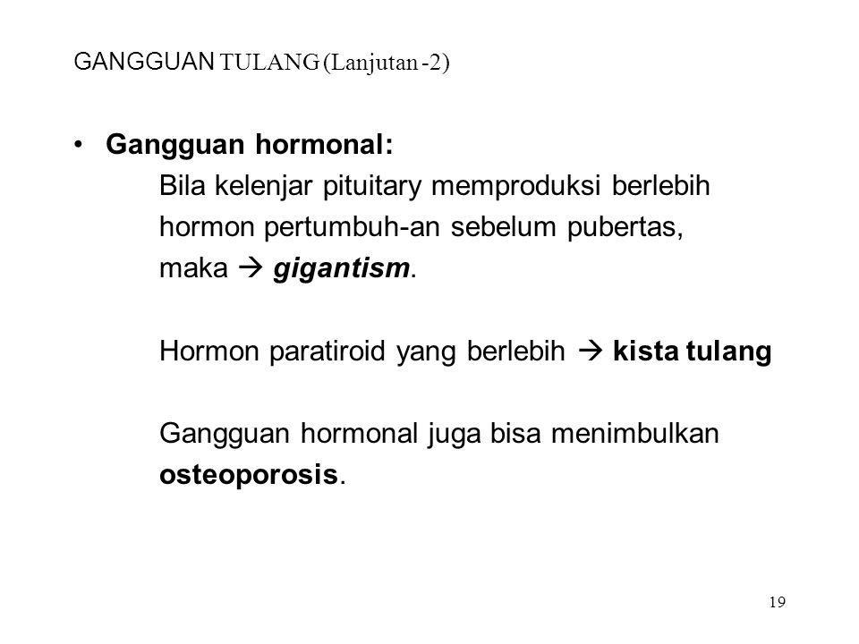 19 GANGGUAN TULANG (Lanjutan -2) Gangguan hormonal: Bila kelenjar pituitary memproduksi berlebih hormon pertumbuh-an sebelum pubertas, maka  gigantis