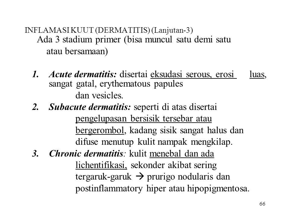 66 INFLAMASI KUUT (DERMATITIS) (Lanjutan-3) Ada 3 stadium primer (bisa muncul satu demi satu atau bersamaan) 1.Acute dermatitis: disertai eksudasi ser