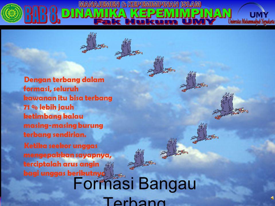 Formasi Bangau Terbang Dengan terbang dalam formasi, seluruh kawanan itu bisa terbang 71 % lebih jauh ketimbang kalau masing-masing burung terbang sendirian.
