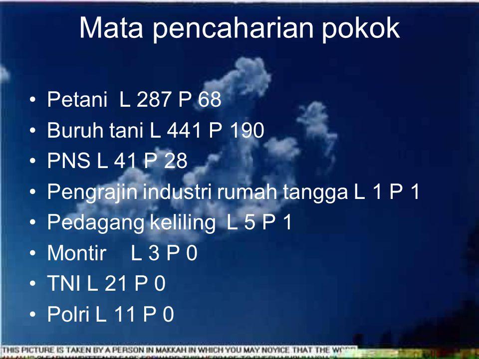 Pendidikan Tamat D3 /Sederajat L 14 P 11 Tamat S1 / Sederajat L 16 P 19 Tamat S2/ Sederajat L 1 P 0 orang