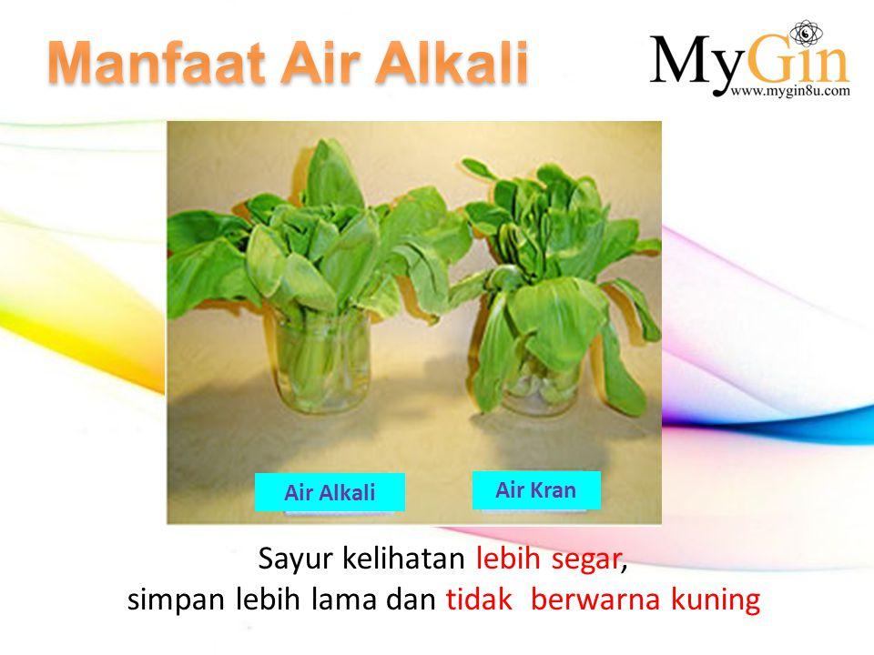 Sayur kelihatan lebih segar, simpan lebih lama dan tidak berwarna kuning Air Alkali Air Kran