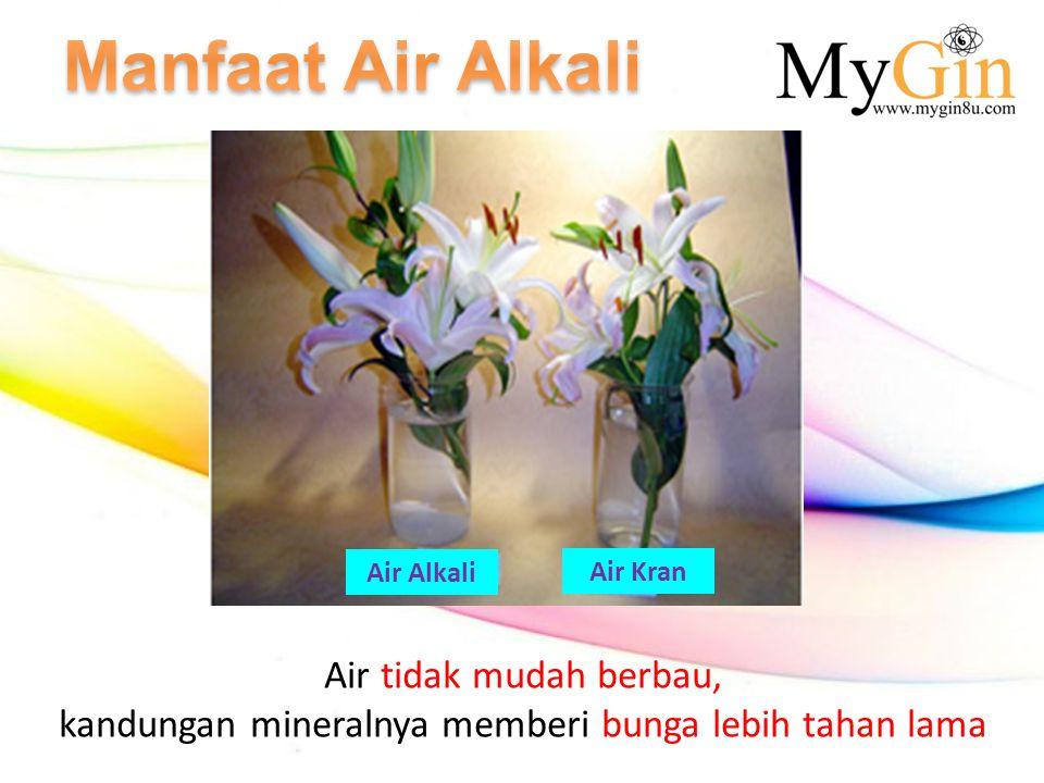 Air tidak mudah berbau, kandungan mineralnya memberi bunga lebih tahan lama Air Alkali Air Kran