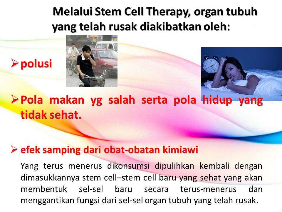 Melalui Stem Cell Therapy, organ tubuh yang telah rusak diakibatkan oleh:  polusi  Pola makan yg salah serta pola hidup yang tidak sehat.  efek sam